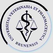 fvl-logo-vfu-original1